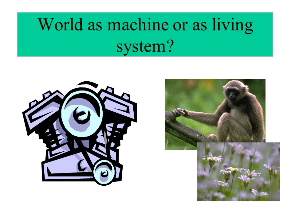 World as machine or as living system