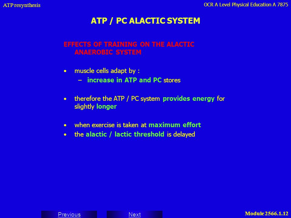ATP resynthesis ATP / PC ALACTIC SYSTEM. EFFECTS OF TRAINING ON THE ALACTIC ANAEROBIC SYSTEM. muscle cells adapt by :