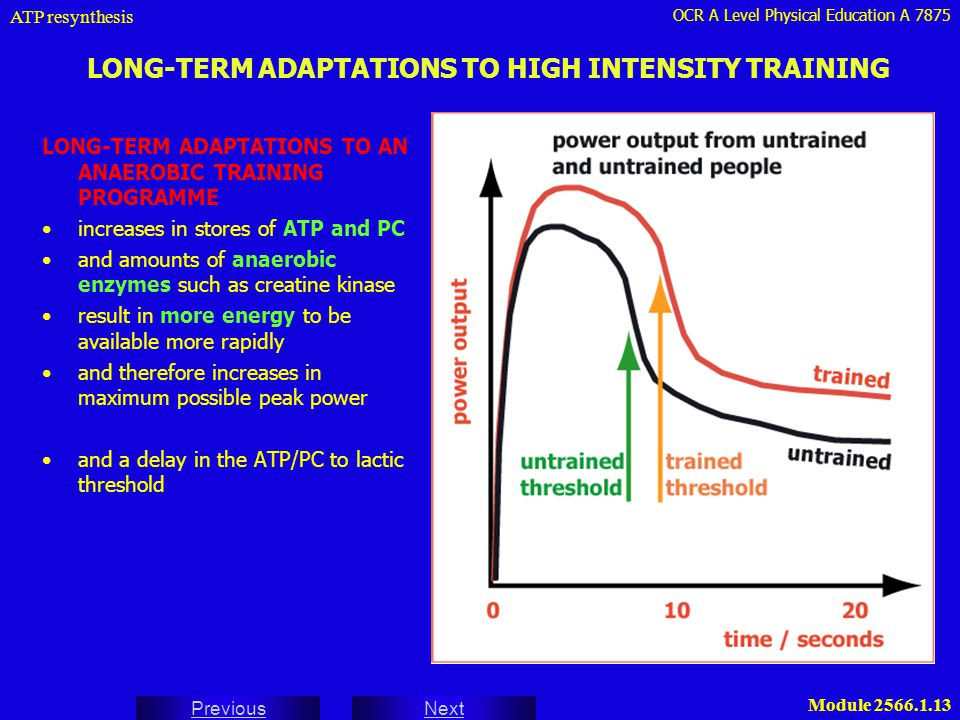 LONG-TERM ADAPTATIONS TO HIGH INTENSITY TRAINING