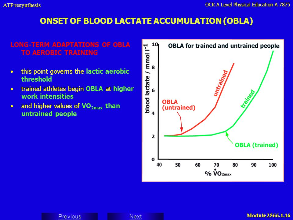 ONSET OF BLOOD LACTATE ACCUMULATION (OBLA)