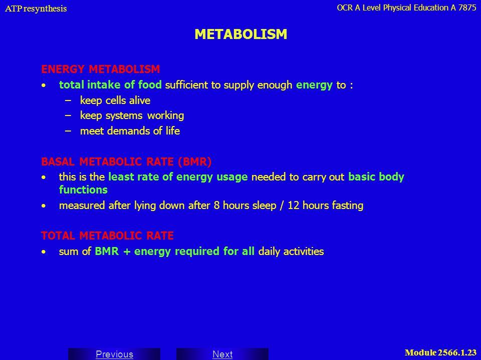 METABOLISM ENERGY METABOLISM
