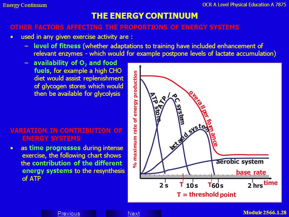 Energy Continuum THE ENERGY CONTINUUM. OTHER FACTORS AFFECTING THE PROPORTIONS OF ENERGY SYSTEMS. used in any given exercise activity are :