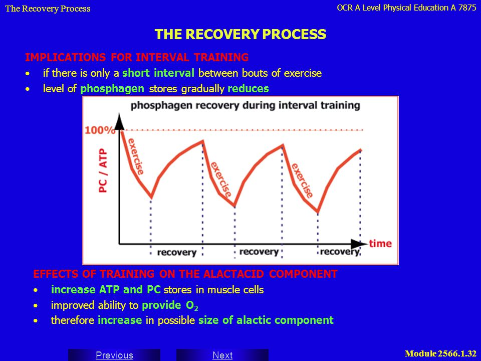 THE RECOVERY PROCESS IMPLICATIONS FOR INTERVAL TRAINING