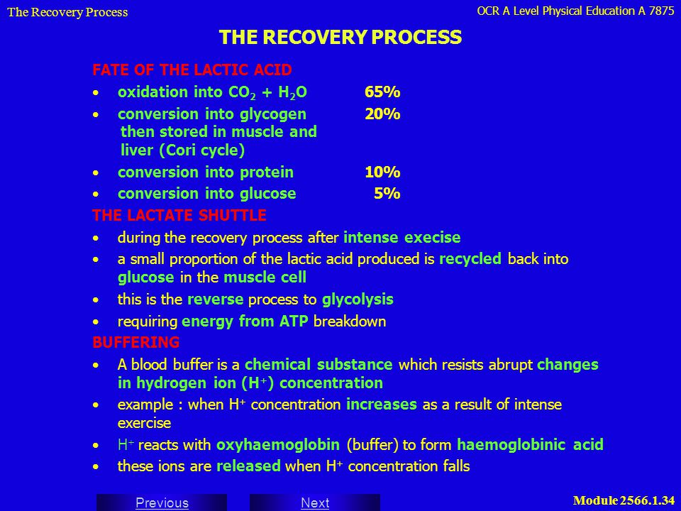 THE RECOVERY PROCESS FATE OF THE LACTIC ACID