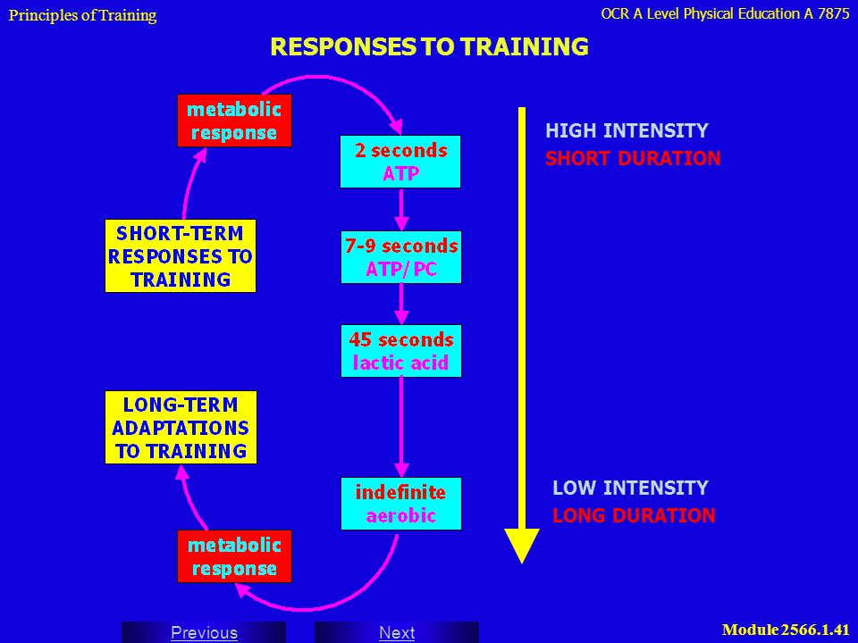 RESPONSES TO TRAINING HIGH INTENSITY SHORT DURATION LOW INTENSITY