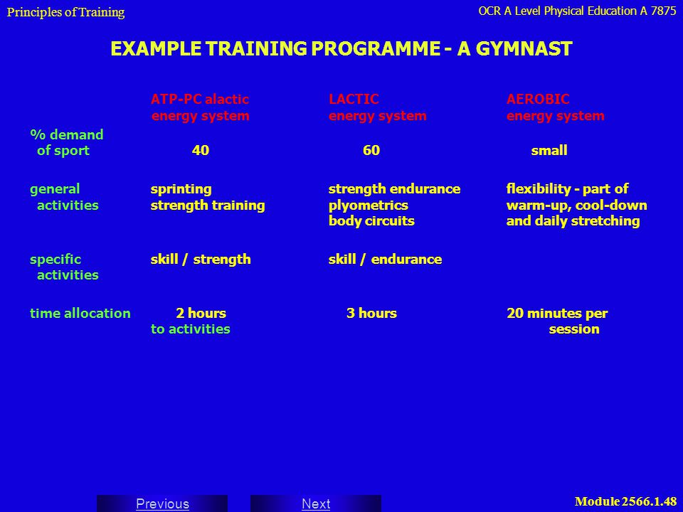 EXAMPLE TRAINING PROGRAMME - A GYMNAST