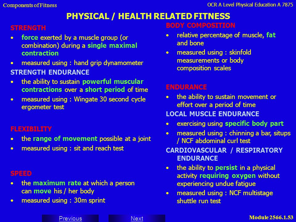 PHYSICAL / HEALTH RELATED FITNESS