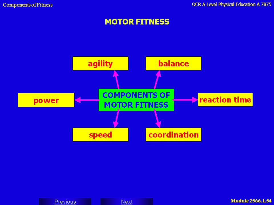 Components of Fitness MOTOR FITNESS