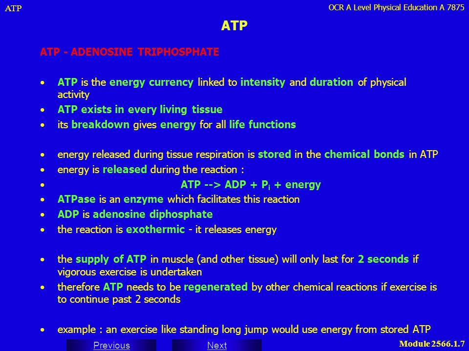 ATP ATP - ADENOSINE TRIPHOSPHATE