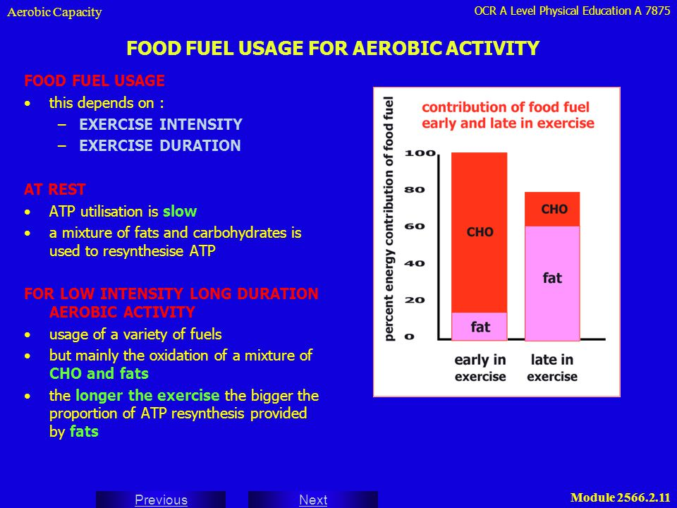 FOOD FUEL USAGE FOR AEROBIC ACTIVITY