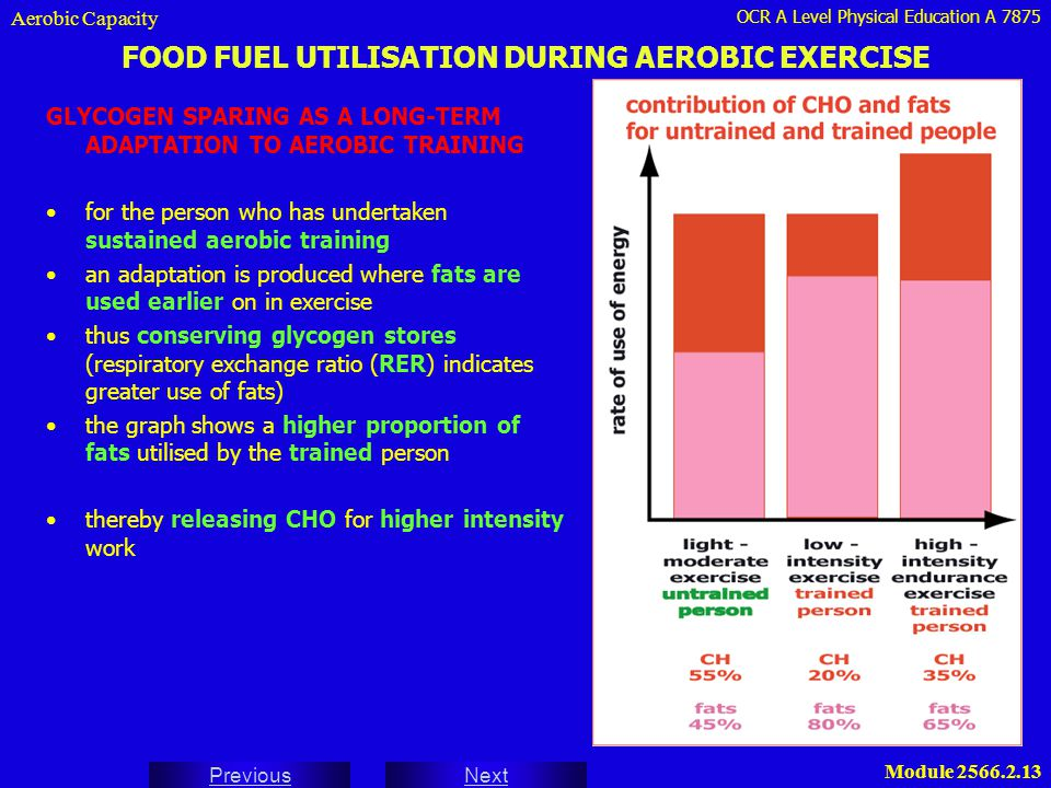 FOOD FUEL UTILISATION DURING AEROBIC EXERCISE