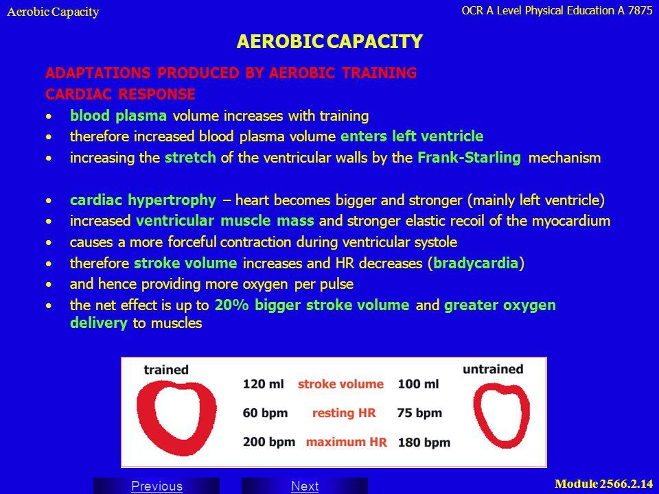 AEROBIC CAPACITY ADAPTATIONS PRODUCED BY AEROBIC TRAINING