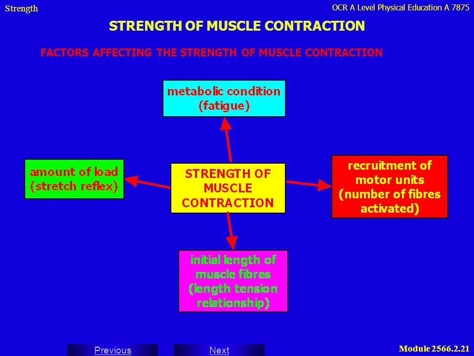 STRENGTH OF MUSCLE CONTRACTION