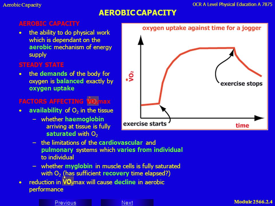 AEROBIC CAPACITY AEROBIC CAPACITY