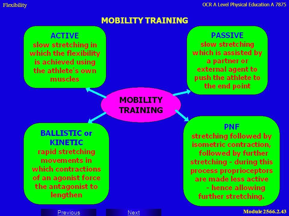 Flexibility MOBILITY TRAINING