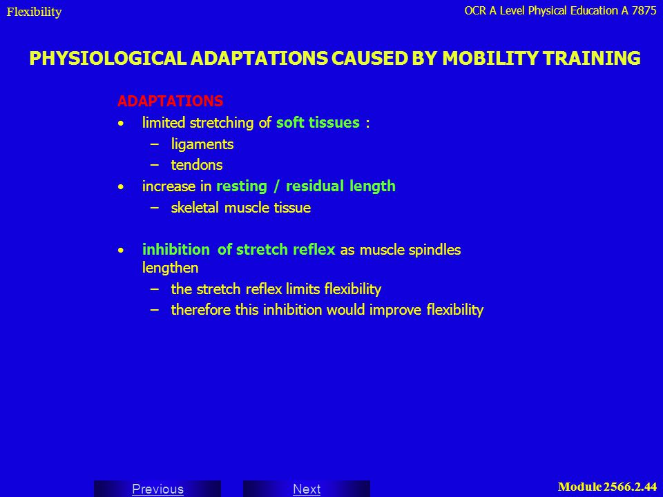 PHYSIOLOGICAL ADAPTATIONS CAUSED BY MOBILITY TRAINING