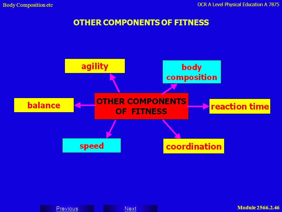 OTHER COMPONENTS OF FITNESS