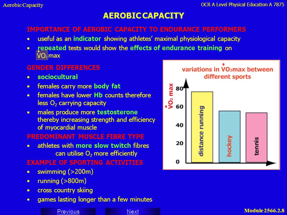 Aerobic Capacity AEROBIC CAPACITY. IMPORTANCE OF AEROBIC CAPACITY TO ENDURANCE PERFORMERS.