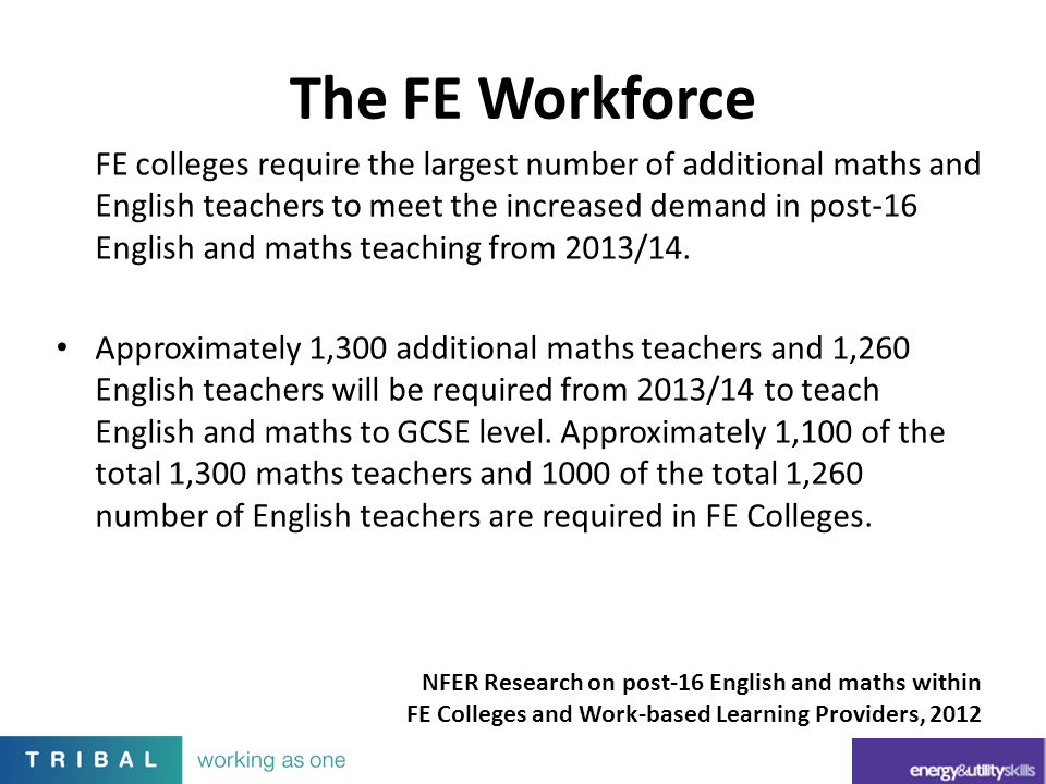 The FE Workforce
