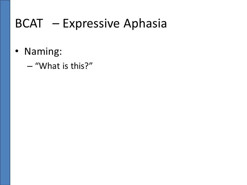 BCAT – Expressive Aphasia