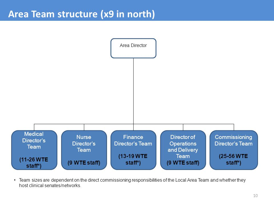 Area Team structure (x9 in north)