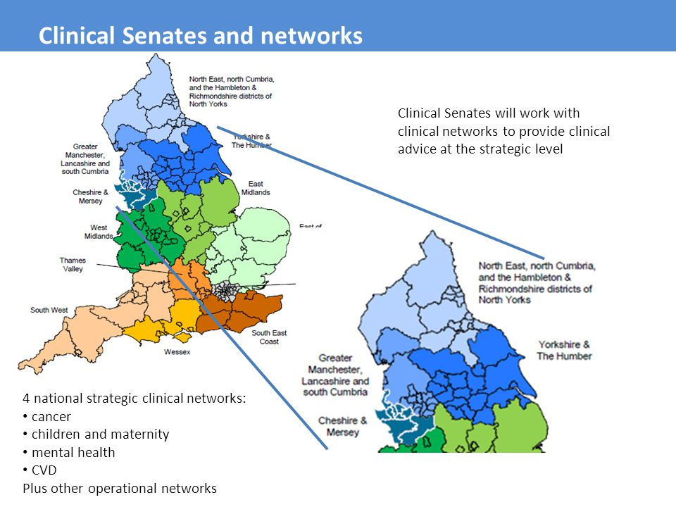 Clinical Senates and networks