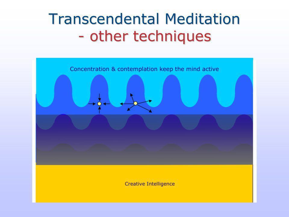 Transcendental Meditation - other techniques