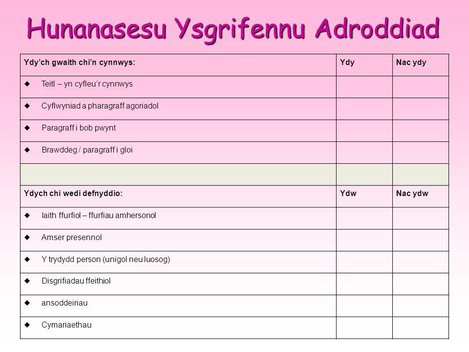 Hunanasesu Ysgrifennu Adroddiad