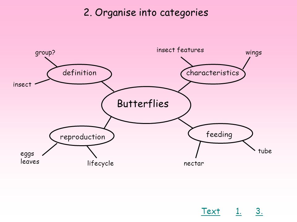 2. Organise into categories