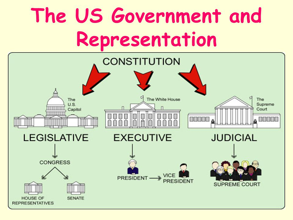 The US Government and Representation