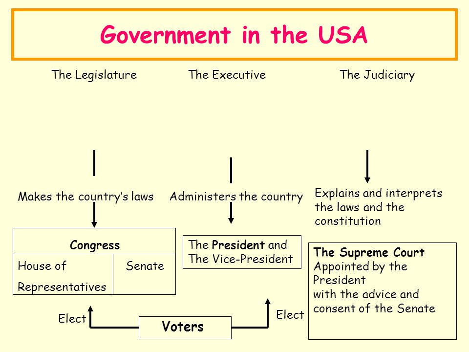 Government in the USA Voters The Legislature The Executive