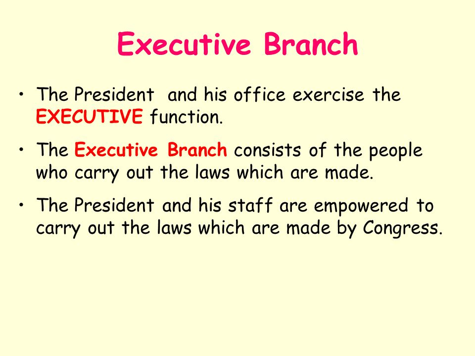 Executive Branch The President and his office exercise the EXECUTIVE function.