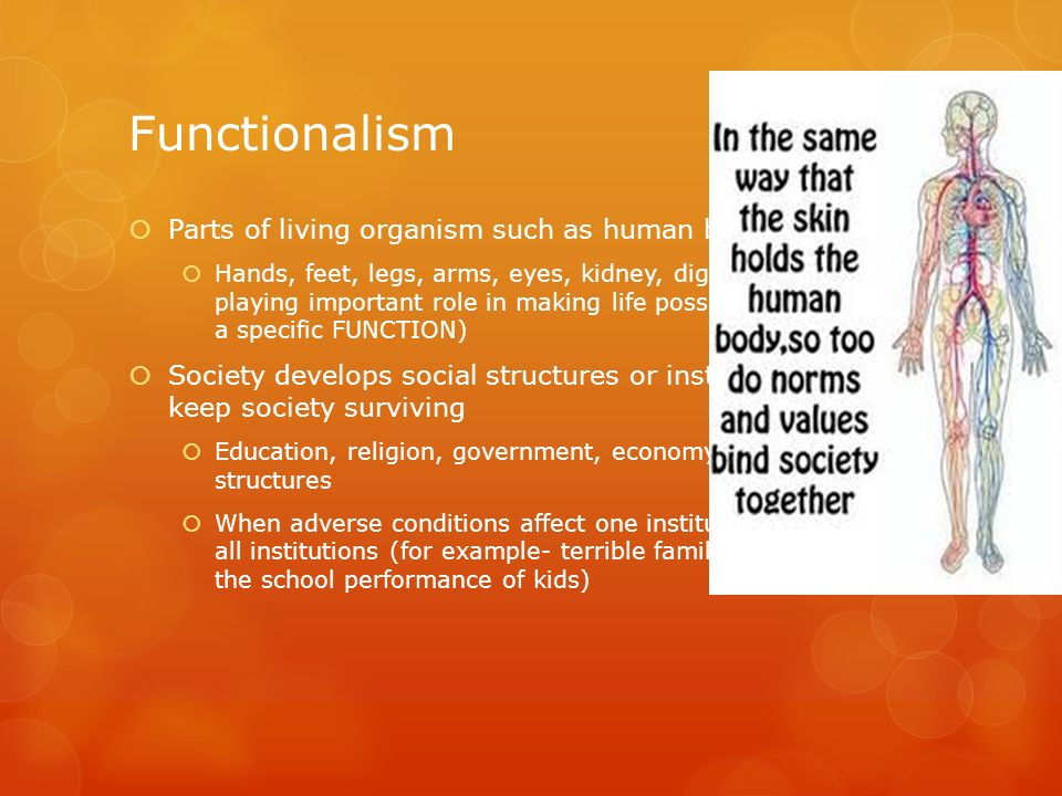 Functionalism Parts of living organism such as human body