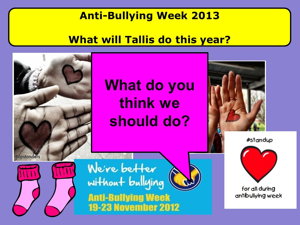 What will Tallis do this year What do you think we should do