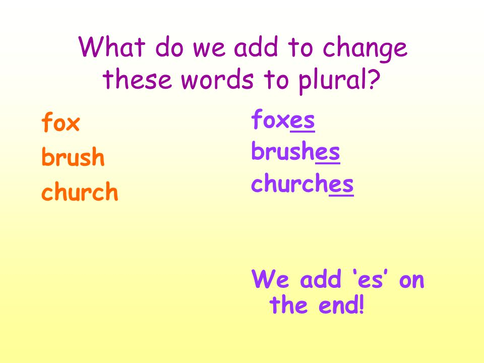 What do we add to change these words to plural