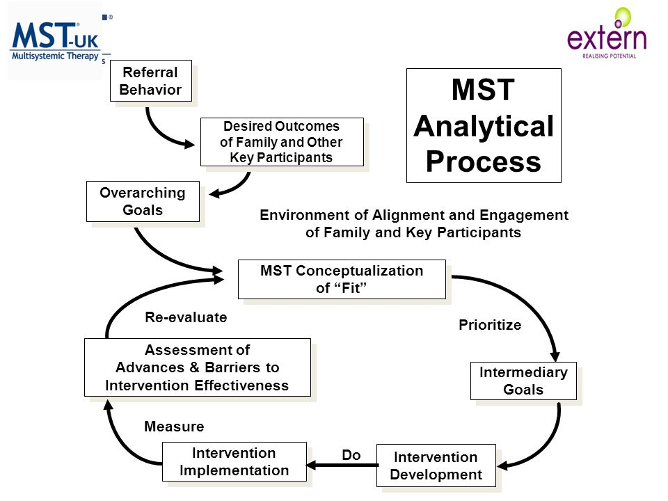 MST Analytical Process