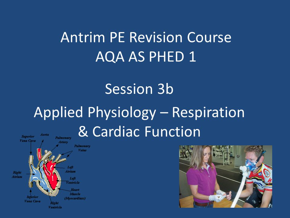 Antrim PE Revision Course AQA AS PHED 1