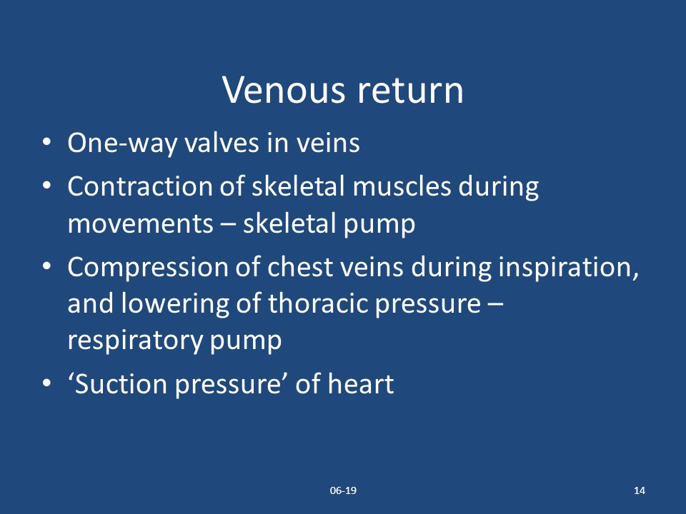 Venous return One-way valves in veins
