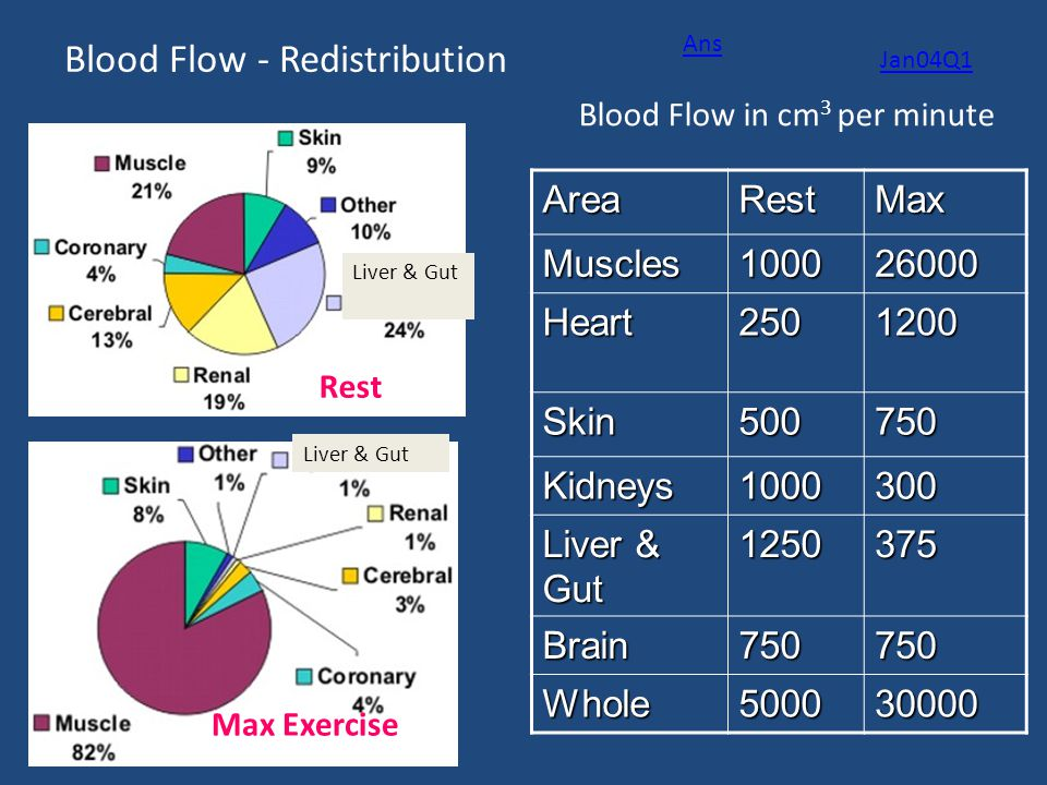 Blood Flow - Redistribution