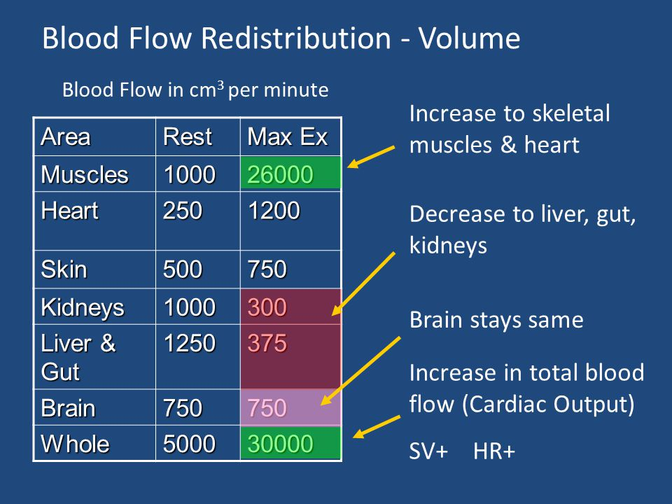 Blood Flow Redistribution - Volume