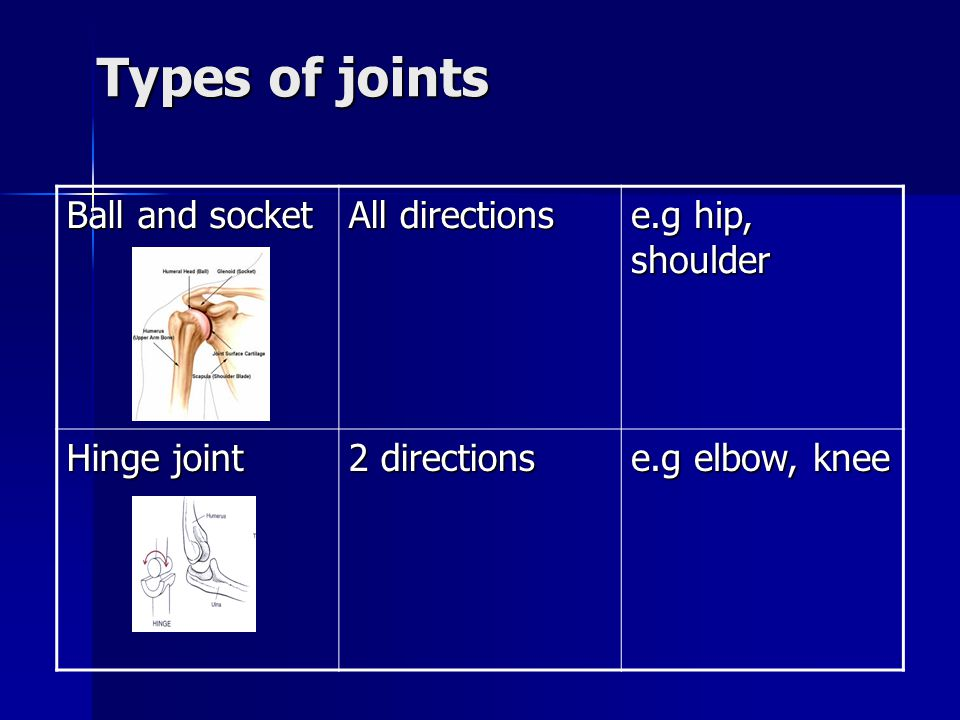 Types of joints Ball and socket All directions e.g hip, shoulder
