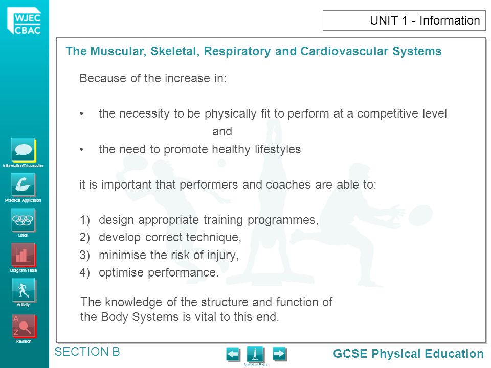UNIT 1 - Information Because of the increase in: the necessity to be physically fit to perform at a competitive level.
