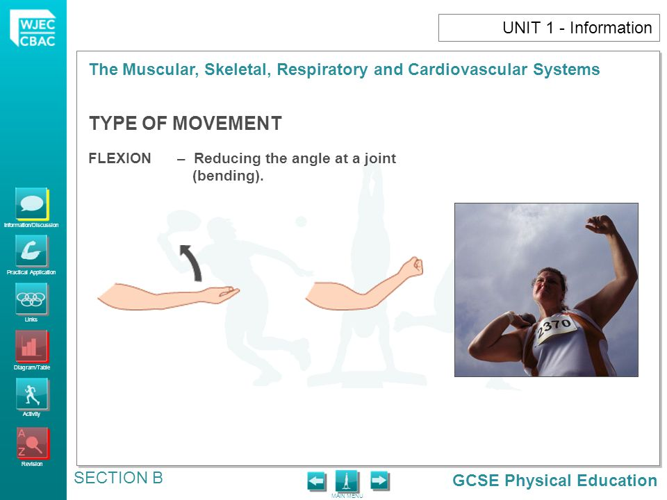 TYPE OF MOVEMENT UNIT 1 - Information