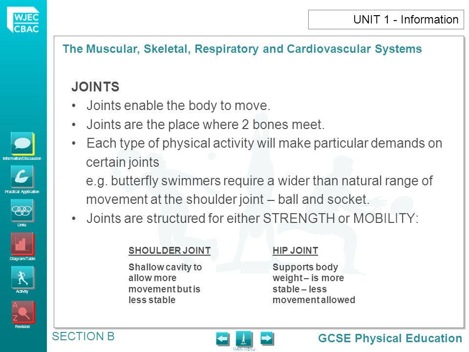 Joints enable the body to move.
