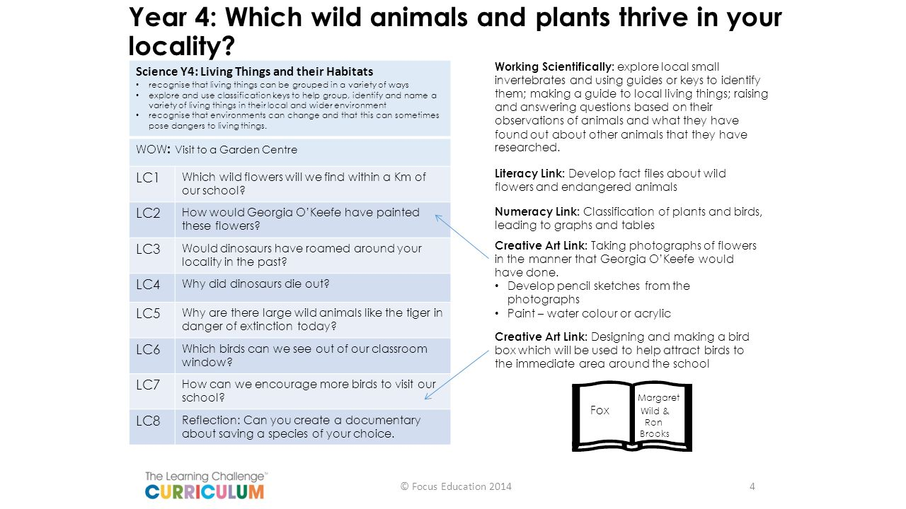 Year 4: Which wild animals and plants thrive in your locality