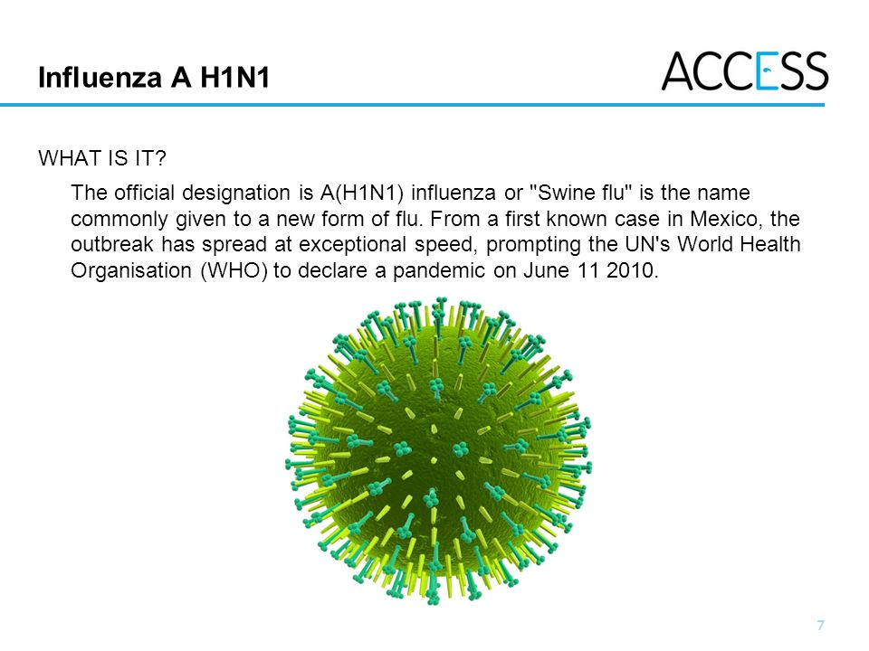 Influenza A H1N1 WHAT IS IT