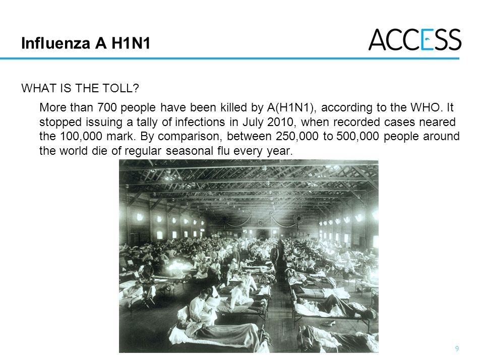 Influenza A H1N1 WHAT IS THE TOLL
