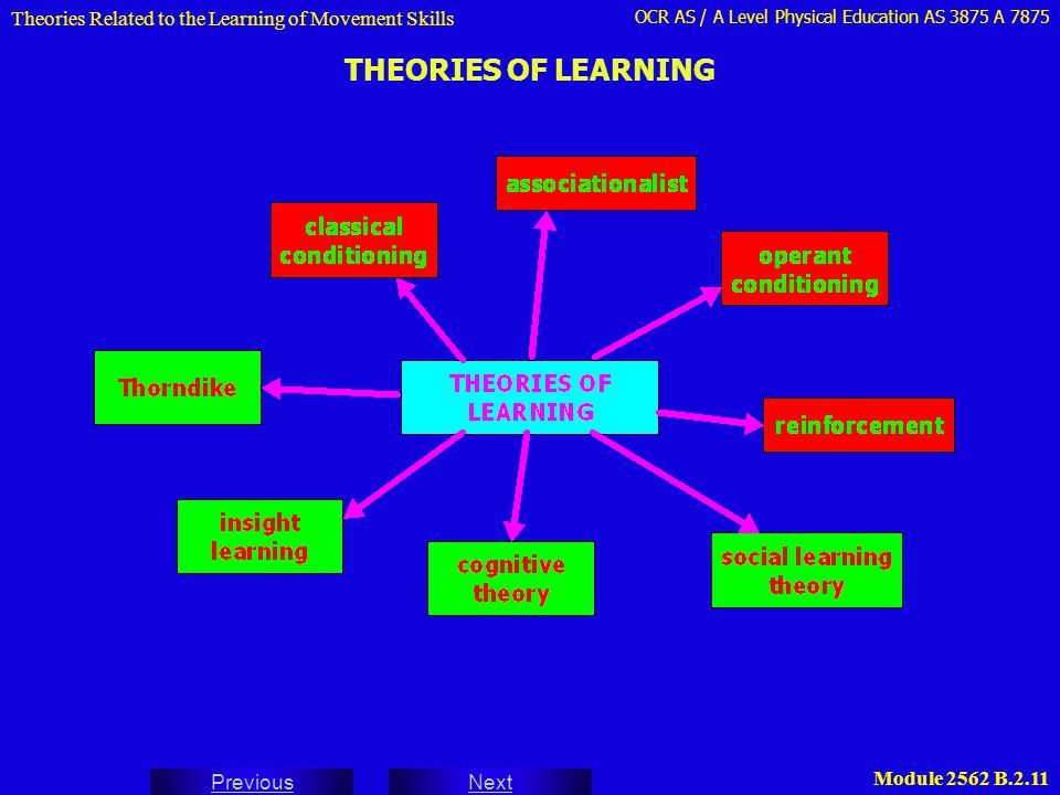 Theories Related to the Learning of Movement Skills