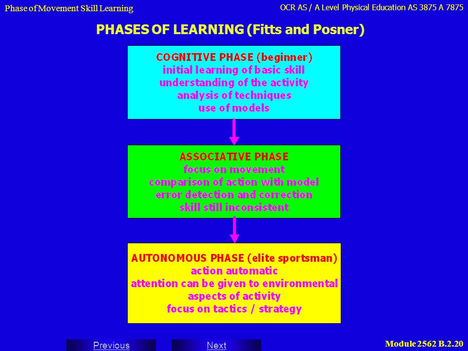 PHASES OF LEARNING (Fitts and Posner)