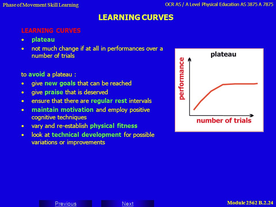 LEARNING CURVES LEARNING CURVES plateau
